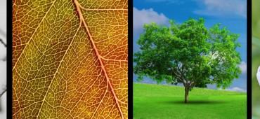 Ako vplývajú zmeny počasia na ľudský organizmus?